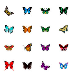 set of butterfly realistic symbols with agrias vector image