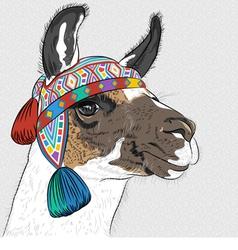 Sketch alpaca smiling vector