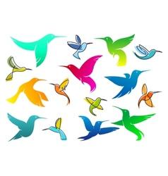 Colorful hummingbird birds vector image vector image