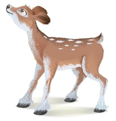 Brown small fawn raised his head up vector image