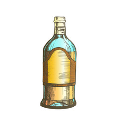 Color closed tall classic mexican tequila bottle vector