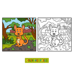 coloring book for children kangaroo vector image