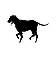 Dog walking pictogram icon vector