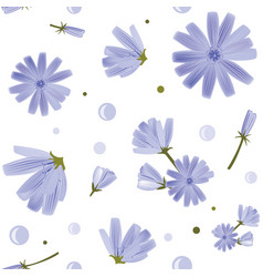 floral seamless pattern with chicory flowers vector image