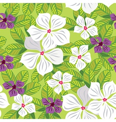 Floral seamless pattern with white flowers vector image