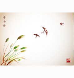 Flying swallow birds and green grass traditional vector