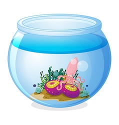 A bowl with a squid and two jellyfishes vector image vector image