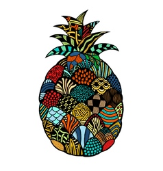 pineapple Hand drawn vector image vector image