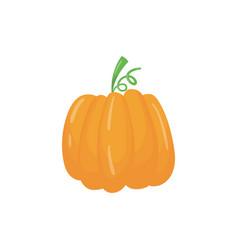 cartoon icon of big bright orange pumpkin ripe vector image