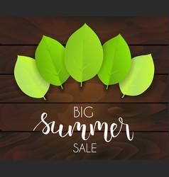 Summer sale green leaves background vector