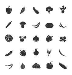 gray vegetable silhouettes vector image vector image