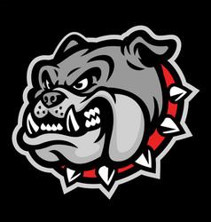 angry head mascot bulldog vector image