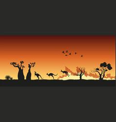black silhouette australian animals in bushfire vector image