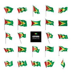 Guyana flag on a white vector