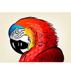 Parrot background vector
