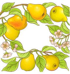Pear frame vector