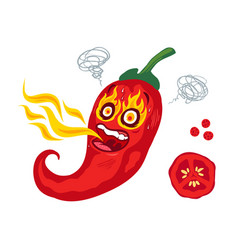 spicy chilli pepper vector image
