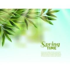 Spring Leaves Background vector