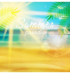 Summer calligraphic design template vector image