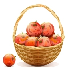 Wicker basket full of red apples vector