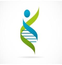 Dna genetic symbol - man icon vector