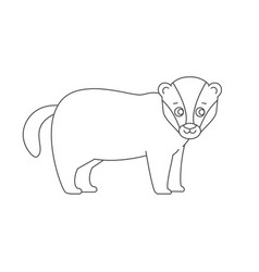 Badger for coloring book vector