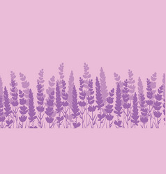 Lavender flowers purple border seamless pattern vector
