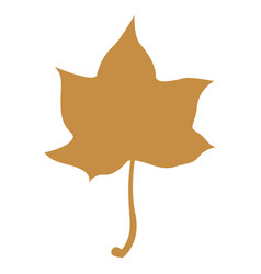 orange maple leaf isolated on white background vector image