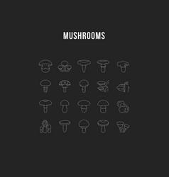 set line icons mushrooms vector image