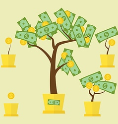 money tree growth vector image vector image