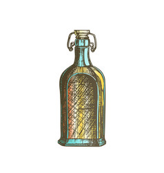 color drawn blank whisky bottle with flip cap vector image