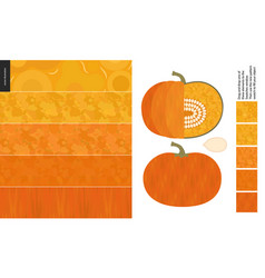 food patterns vegetable pumpkin vector image