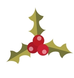 Holly icon Isolated on white background vector image