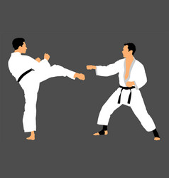 Karate man fighters in kimono duel self defense vector