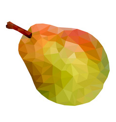Pear low poly vector