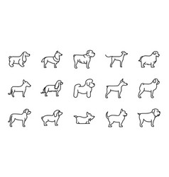 set dogs breed standing icons linear style vector image