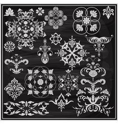 vintage floral chalk drawn design elements vector image