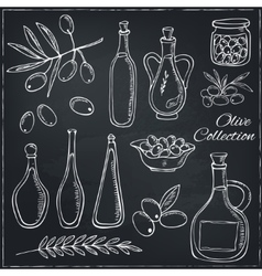 Olive sketch set with tree branch and oil bottle vector