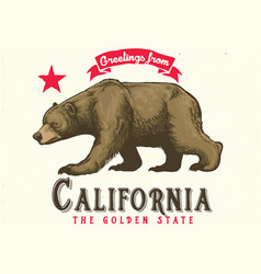 Greeting from california with brown bear vector