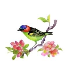 Bird on watercolor blooming tree vector image