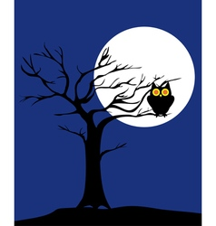 tree owl vector image vector image