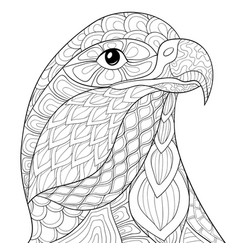 adult coloring bookpage a head of eagle image for vector image