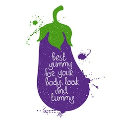 Colorful Of Isolated Eggplant Silhouette vector image