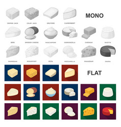 Different kind of cheese flat icons in set vector