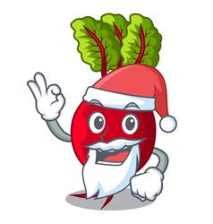 Santa whole beetroots with green leaves cartoon vector