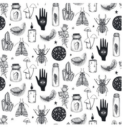seamless pattern with hand drawn mystical vector image