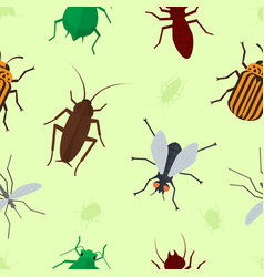 fly insects wildlife entomology bug animal nature vector image vector image