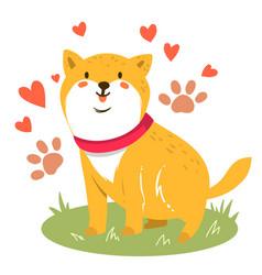 Cute funny cartoon dog shiba inu dog vector
