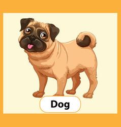 Educational english word card dog vector