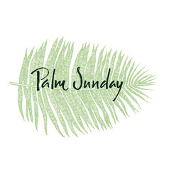 palm sunday green leaf hand lettering vector image
